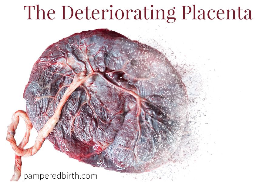 Illustration of a placenta fragmenting